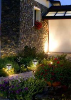 Lifetime Series Solar Garden Lights - 2 Pack