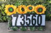 Sunflower Solar Address Light
