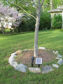 Solar Spotlight with 12 LED's