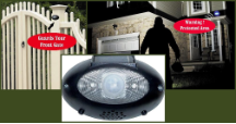 Eyewatch Solar Motion Detector Lights with Alarm