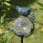 Aquarius Solar Birdbath - Crackled Glass Orb