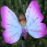 Pink Butterfly Solar Light