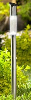 Stainless Steel Long Post Solar Pathway Light - Set of 4