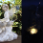 Fairy with bunny statue - Night View