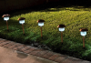 Belmont Solar Copper Lights - 12 Pack