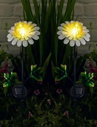 Daisy solar lights